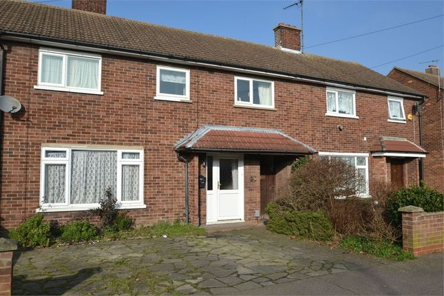Thumbnail End terrace house to rent in Hickory Avenue, Colchester, Essex