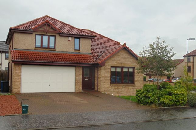 Thumbnail Detached house to rent in Old Hall Knowe Terrace, Bathgate