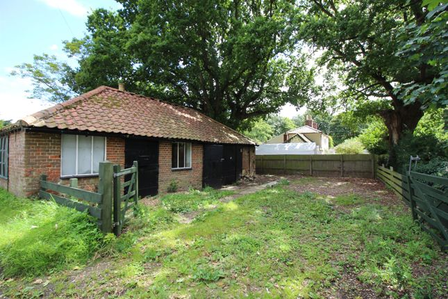 Thumbnail Property for sale in High Green, Brooke, Norwich