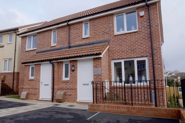 """Thumbnail End terrace house for sale in """"The Hanbury"""" at Luscombe Road, Paignton"""