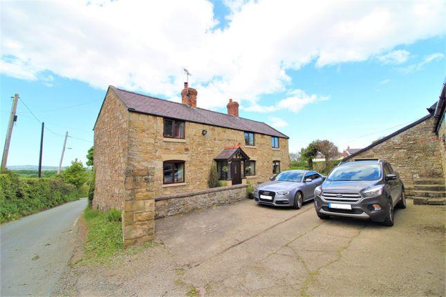 Thumbnail Detached house for sale in Ffordd Nercwys, Treuddyn