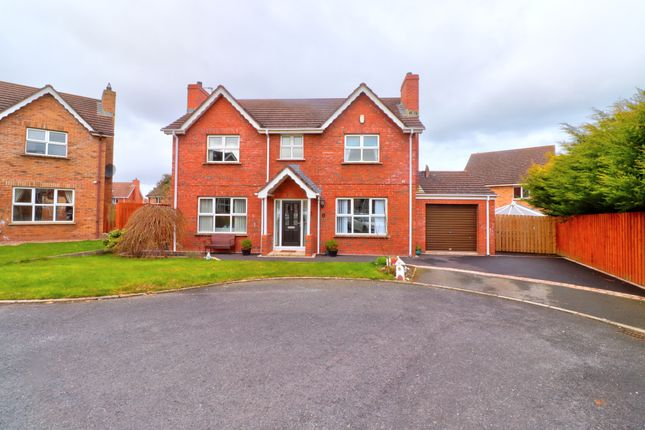 Thumbnail Detached house for sale in Robbys Point, Donaghadee