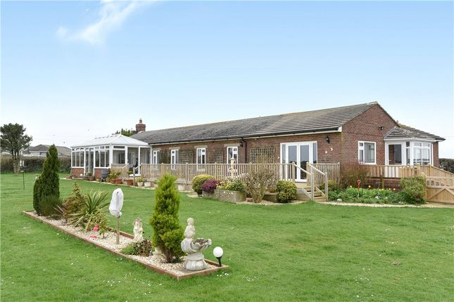 Thumbnail Detached bungalow for sale in Black Down View, Martinstown, Dorchester