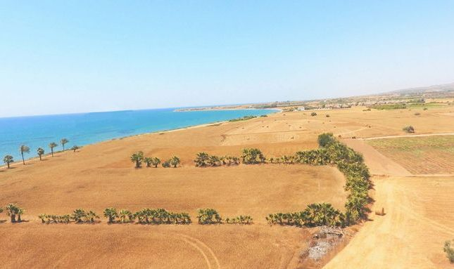 Thumbnail Land for sale in Mazotos, Cyprus