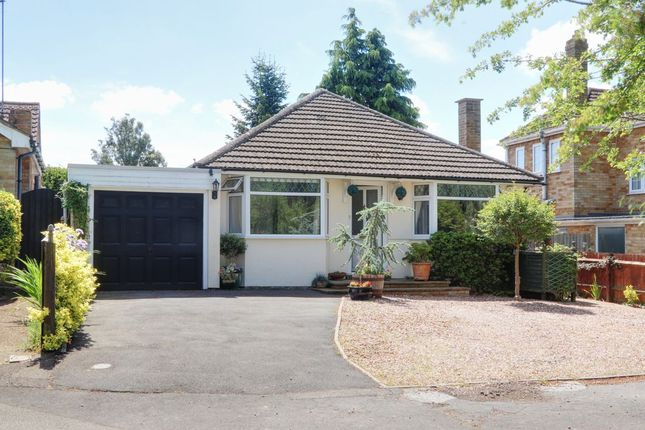 3 bed detached bungalow for sale in Sywell Road, Overstone, Northampton NN6