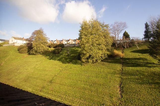 Garden of Tippett Rise, Reading, Berkshire RG2