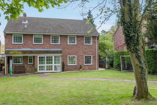 Thumbnail Detached house for sale in Rectory Meadow, Litcham, King's Lynn
