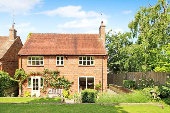 Thumbnail Detached house for sale in The Waldrons, East Garston