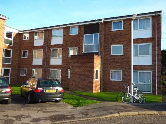Thumbnail Flat to rent in Snowdrop Close, Chelmsford