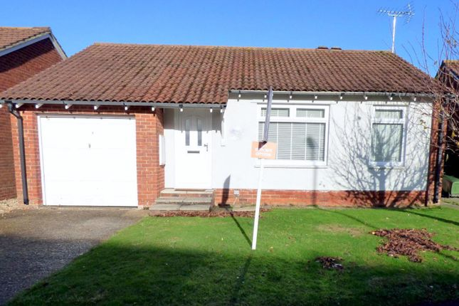 Thumbnail Bungalow to rent in Westlands, Rustington, Littlehampton