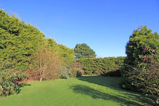 Rear Garden of Penruan Lane, St. Mawes, Truro TR2