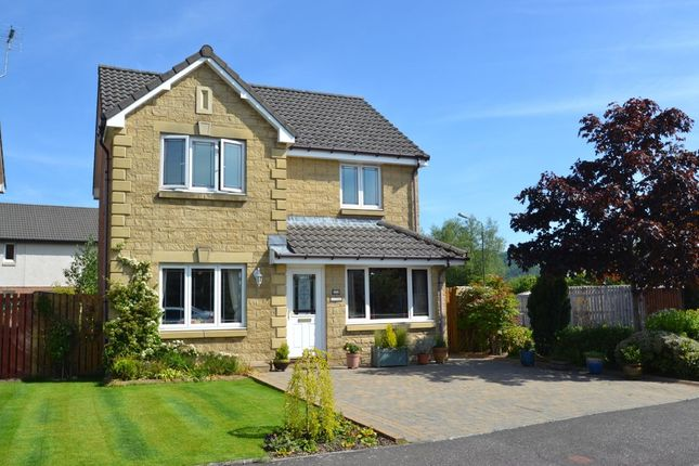Thumbnail Detached house to rent in Ben Lomond Drive, Stirling