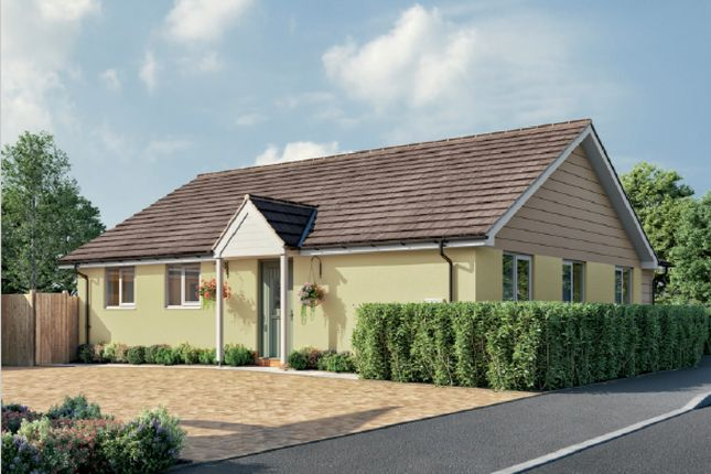 3 bed detached bungalow for sale in Orchard Brooks, Williton, Taunton TA4