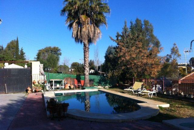 Pool Area of Spain, Málaga, Alhaurín El Grande