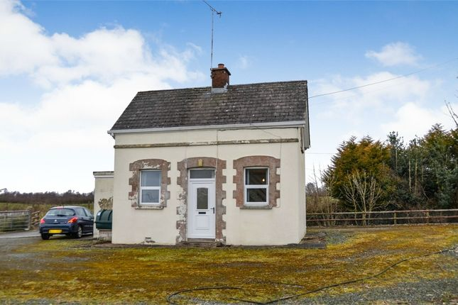 Thumbnail Detached bungalow for sale in Coronation Cottages, Omagh, County Tyrone
