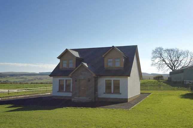 Thumbnail Property for sale in Hollybush, Ayr