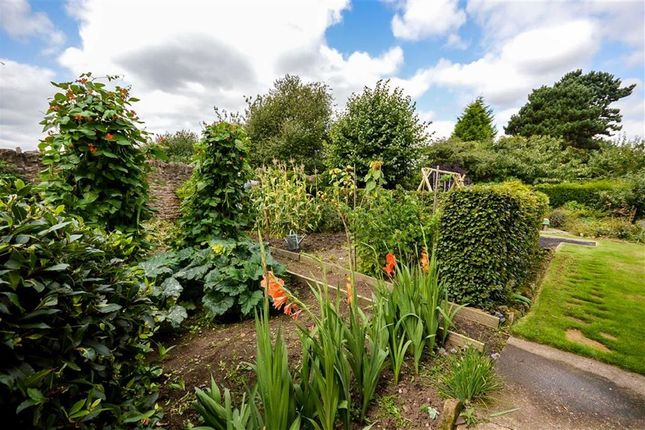 Thumbnail Detached house for sale in The Mount, Redhill, Nottingham