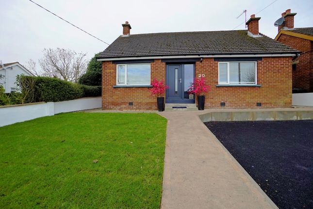 Thumbnail Detached bungalow for sale in Bellevue, Bangor