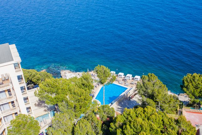 Communal Pool of Illetas, Illetes, Majorca, Balearic Islands, Spain