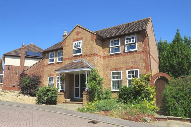 Thumbnail Detached house for sale in Primula Close, Abington Vale, Northampton