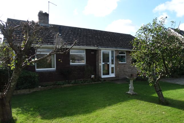 Thumbnail Bungalow to rent in Malcolm Road, Tangmere, Chichester