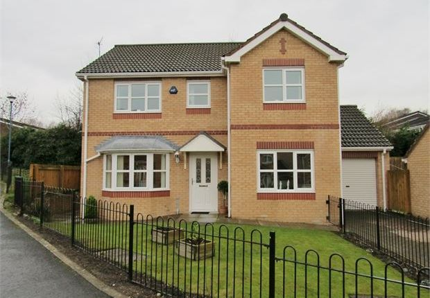 Thumbnail Detached house for sale in Primrose Gardens, Blaydon On Tyne