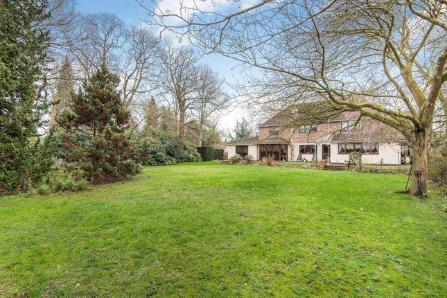 Thumbnail Detached house for sale in Holbrook Lane, Chislehurst, Kent