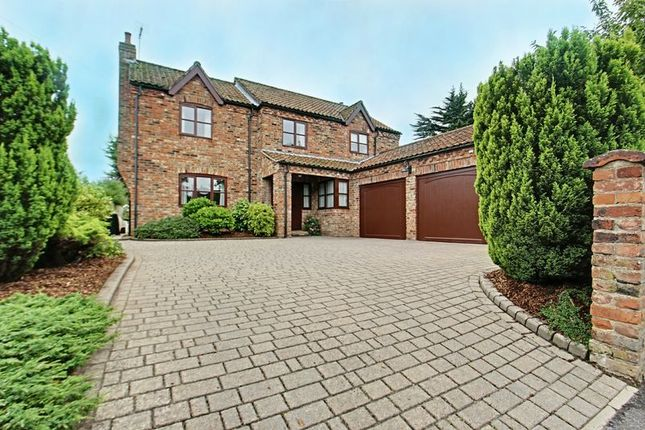 Thumbnail Detached house for sale in Main Street, North Dalton, Driffield