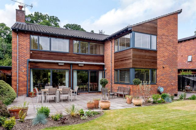 Thumbnail Detached house for sale in Hill House Gardens, Cringleford, Norwich