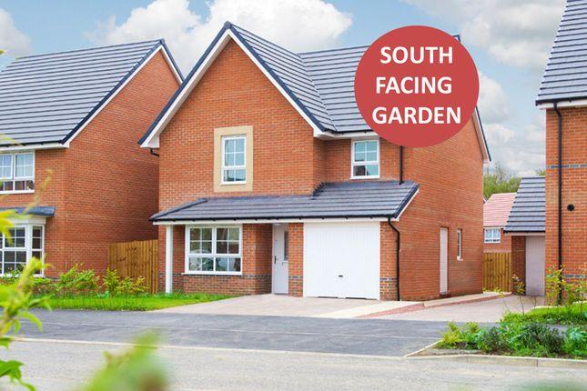 "Thumbnail Detached house for sale in ""Guisboro 1"" at Weddington Road, Nuneaton"