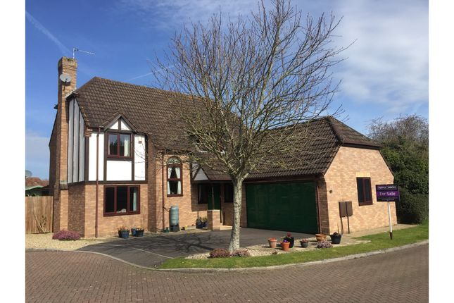 Thumbnail Detached house for sale in Killams Close, Taunton