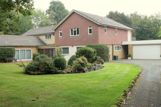 Thumbnail Detached house to rent in Hillcrest, Dormans Park, East Grinstead