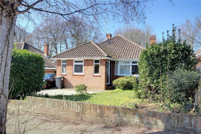 Thumbnail Detached bungalow for sale in Beeches Avenue, Charmandean, Worthing, West Sussex