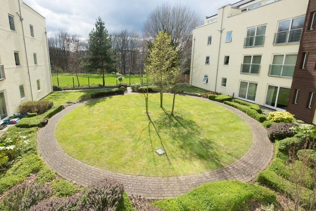 Thumbnail Flat to rent in The Dale, Sheffield