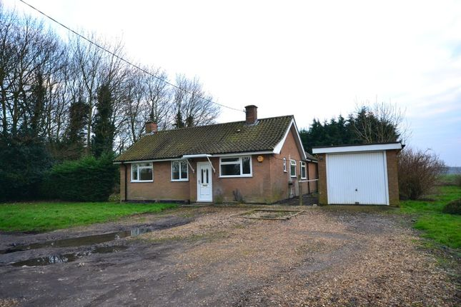Thumbnail Detached bungalow to rent in White House Road, Little Ouse, Ely