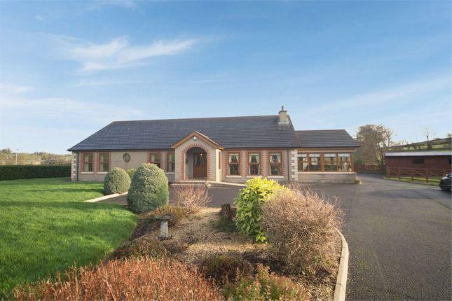 Thumbnail Detached bungalow for sale in Katesbridge Road, Dromara, Dromore, County Down