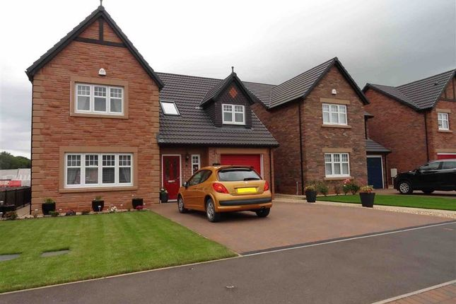 4 bed detached house for sale in Birchwood Way, Dumfries