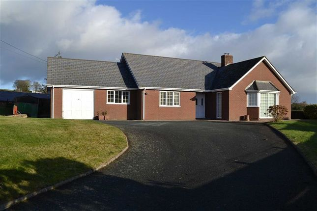 Thumbnail Detached bungalow to rent in Plas Newydd, Dolfor, Newtown, Powys