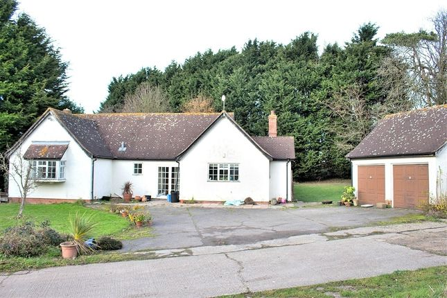 Thumbnail Detached house for sale in Finchingfield, Braintree, Essex