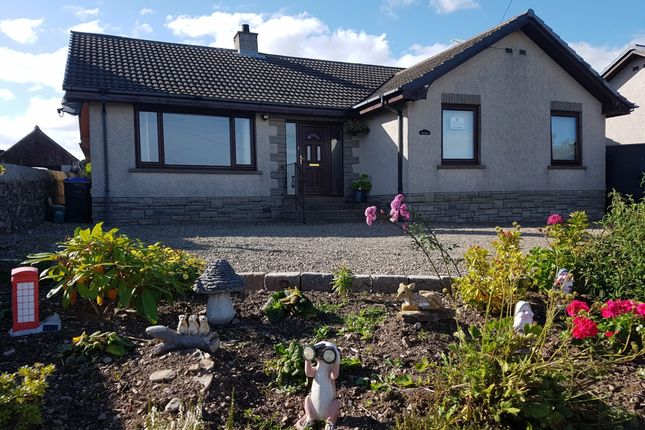 Thumbnail Bungalow for sale in Auchterless, Turriff, Aberdeenshire