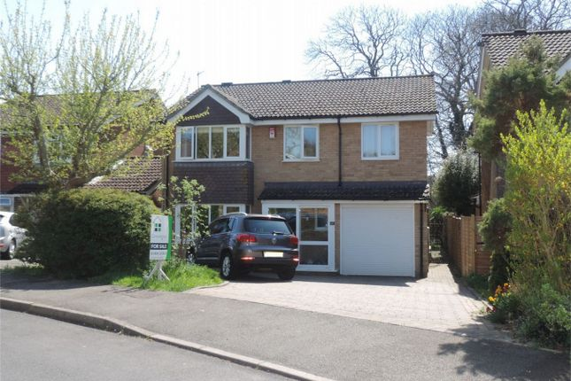 Thumbnail Detached house for sale in Fontwell Avenue, Bexhill On Sea, East Sussex