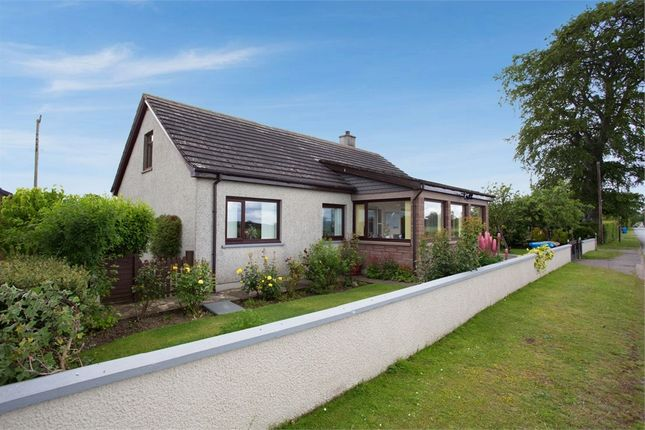 Thumbnail Detached bungalow for sale in Arabella, Arabella, Tain, Highland