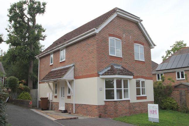 Thumbnail Detached house to rent in Joyce Close, Cranbrook, Kent