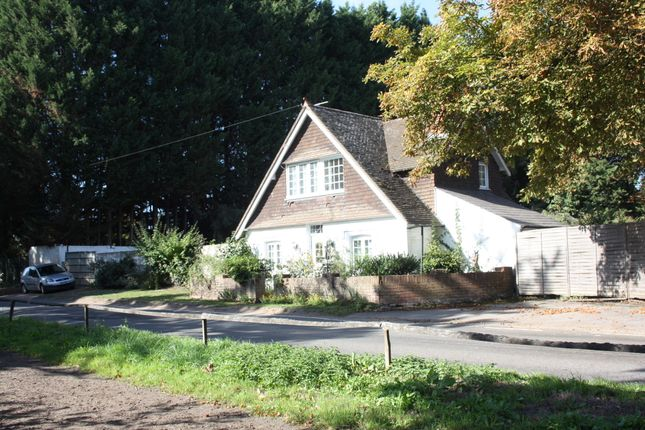 Thumbnail Equestrian property for sale in Windlesham Road, Chobham