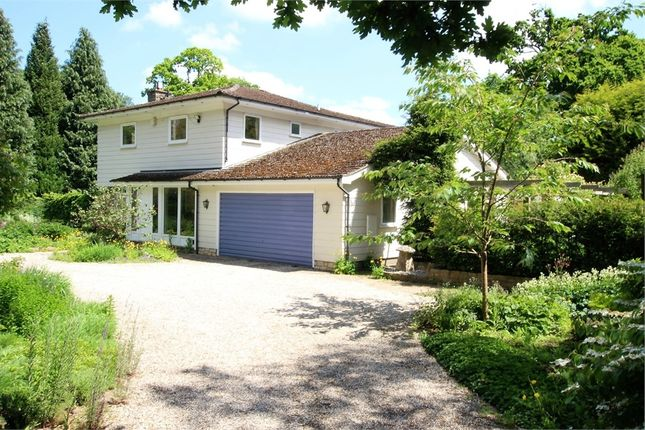 Thumbnail Detached house for sale in Birch Grove, Lake View Road, Felbridge, West Sussex