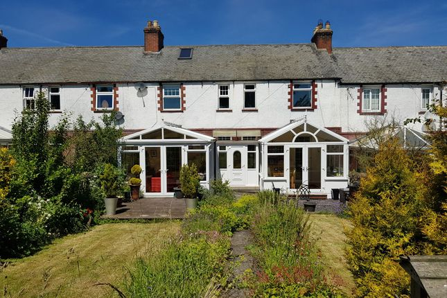 Thumbnail Terraced house for sale in The Terrace, Settlingstones, Hexham