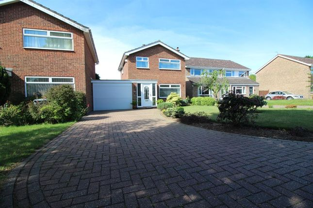 Thumbnail Link-detached house for sale in Foxcotte Close, Norwich