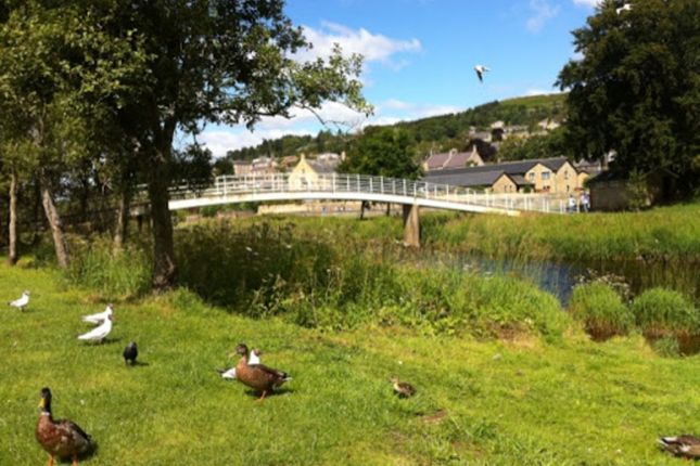 3 bed terraced house for sale in Rothbury, Morpeth