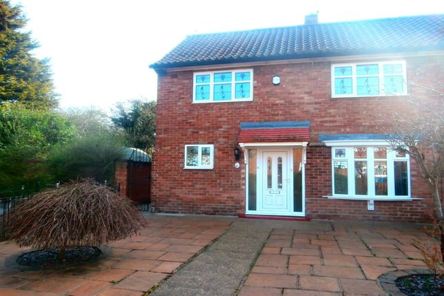 Thumbnail Property to rent in Thanet Road, Hull