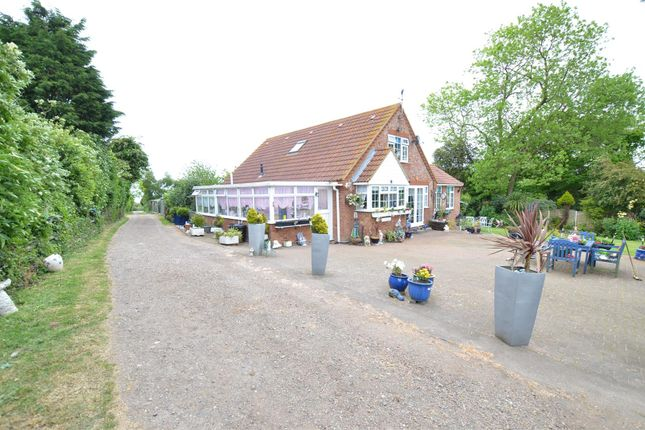 Thumbnail Equestrian property for sale in Bell Farm Lane, Minster On Sea, Sheerness